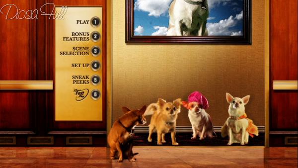Beverly Hills Chihuahua 3 Viva la Fiesta dvd