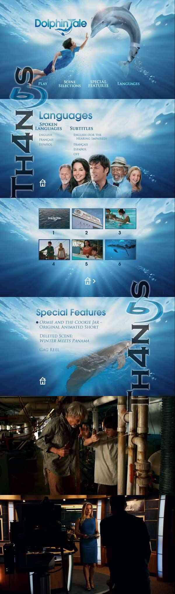 dolphin tale descargar dolphin tale dvd espa u00f1ol latino