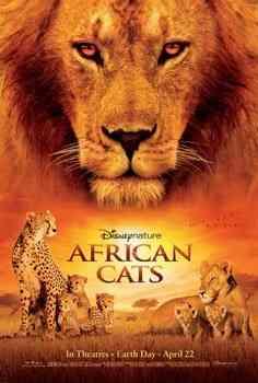 """Felinos de Africa poster"""
