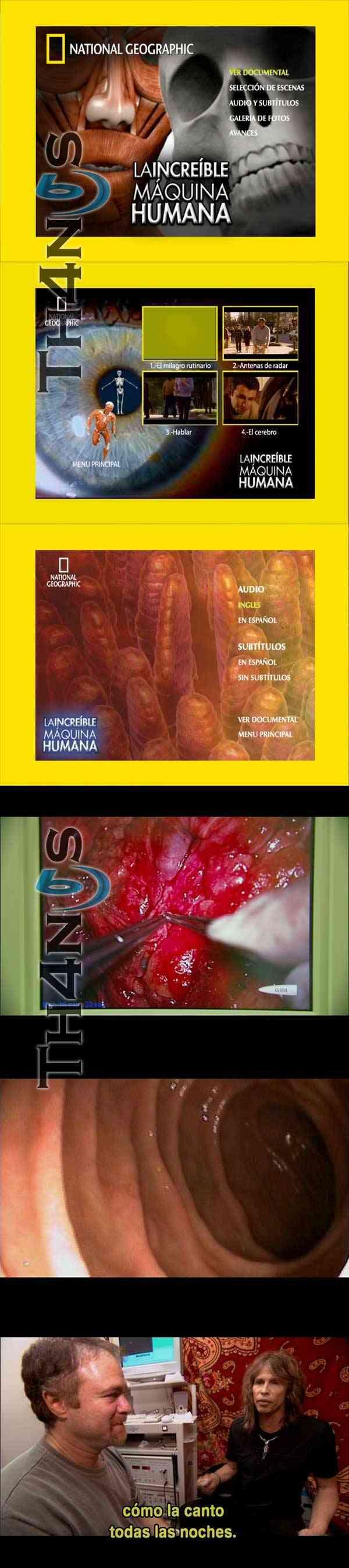 """""""Increible Maquina Humana DVD"""""""