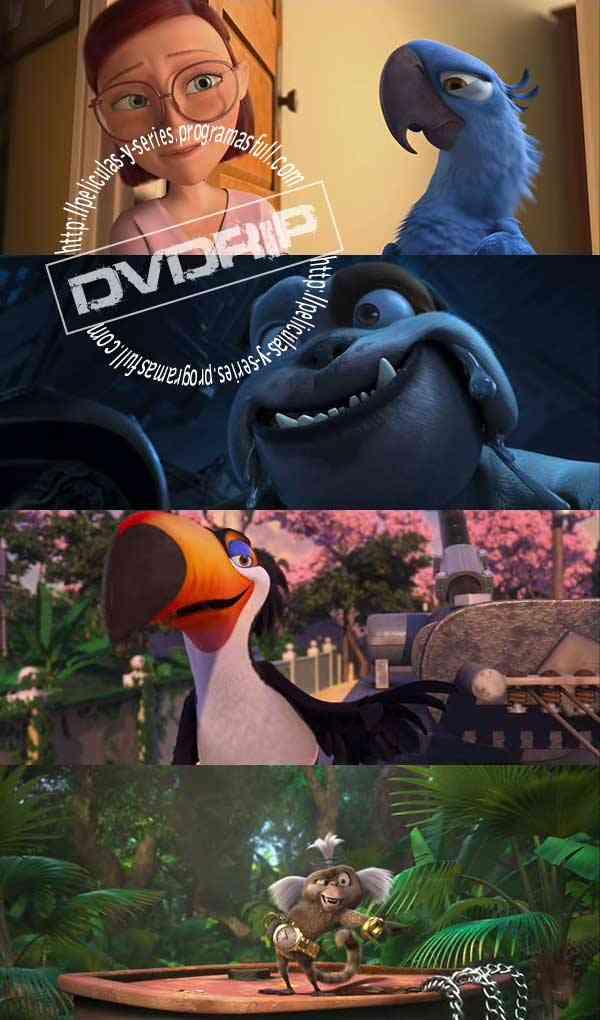 """Rio DVDRip"""