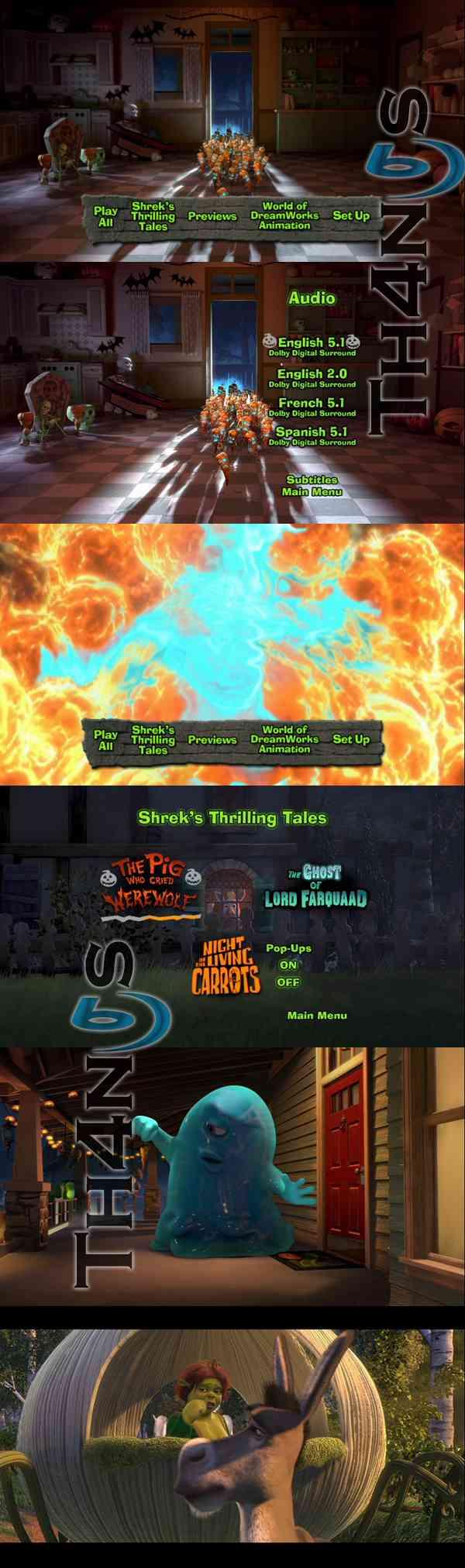"""Shreks Thrilling Tales DVD"""