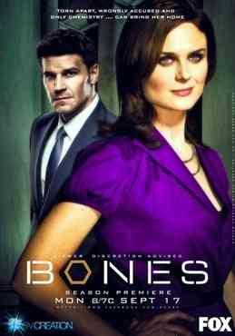 bones temporada 8